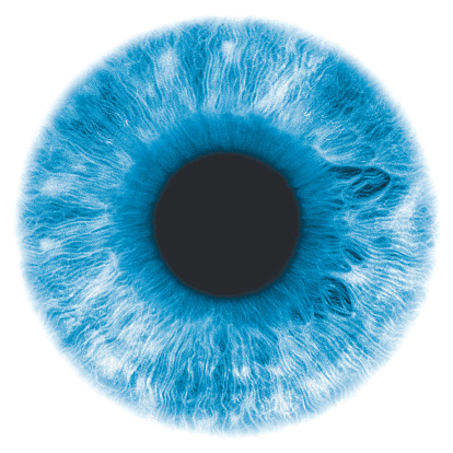 Close up of a blue iris part of the eye
