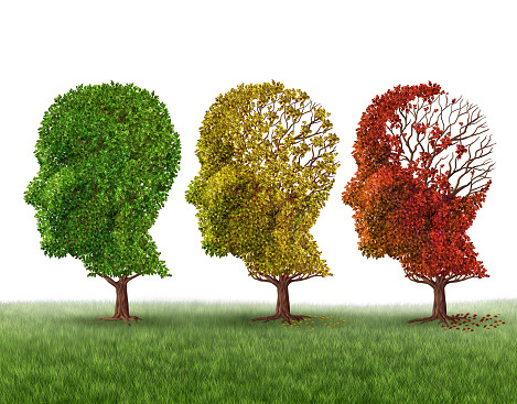 3 trees shaped as humans heads with the leaves gradually fading in the brain area